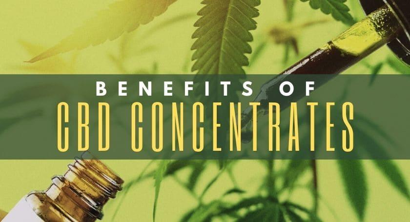 Benefits of CBD Concentrates - MD Ganja