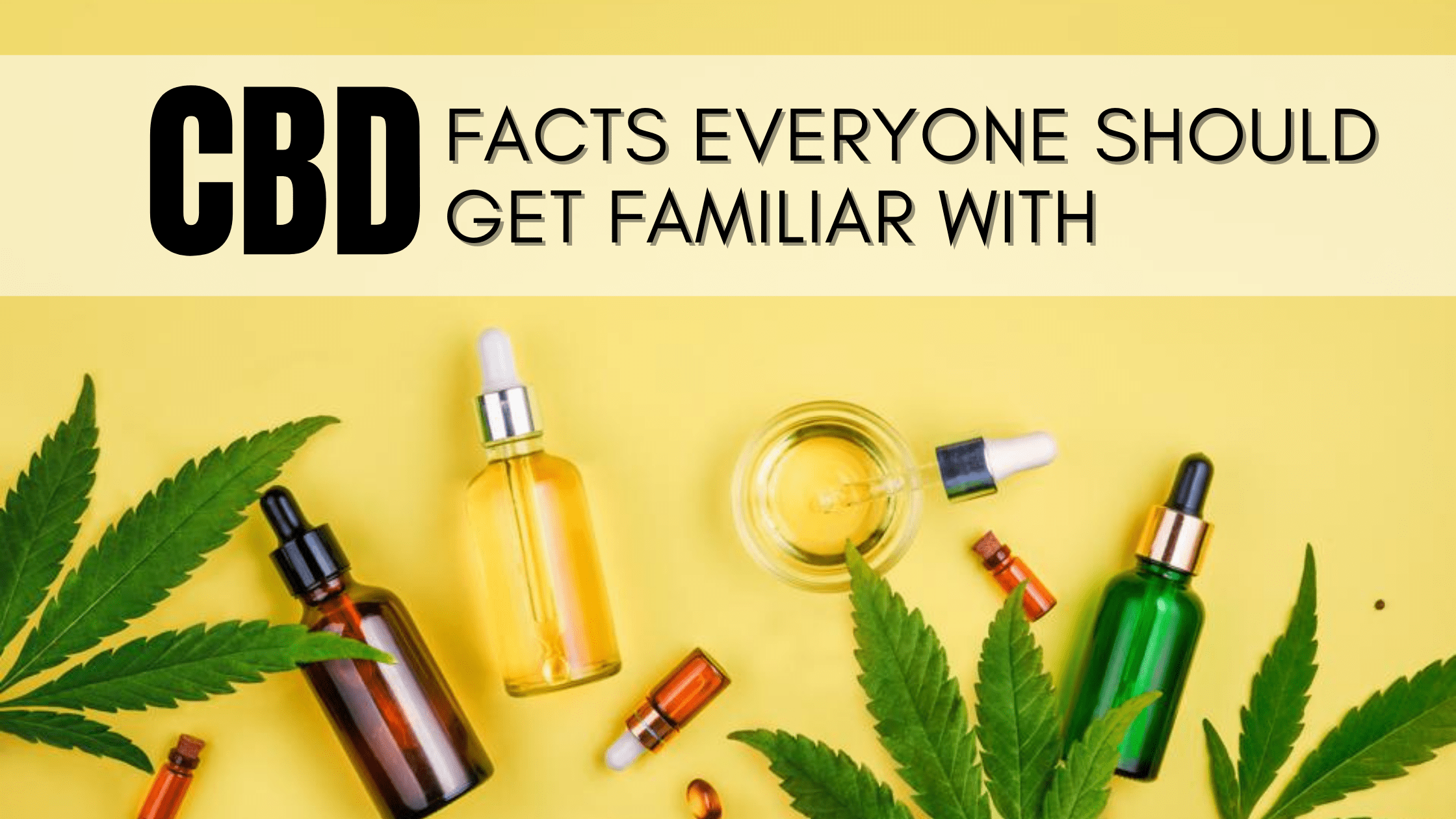 CBD Facts Everyone Should Get Familiar With
