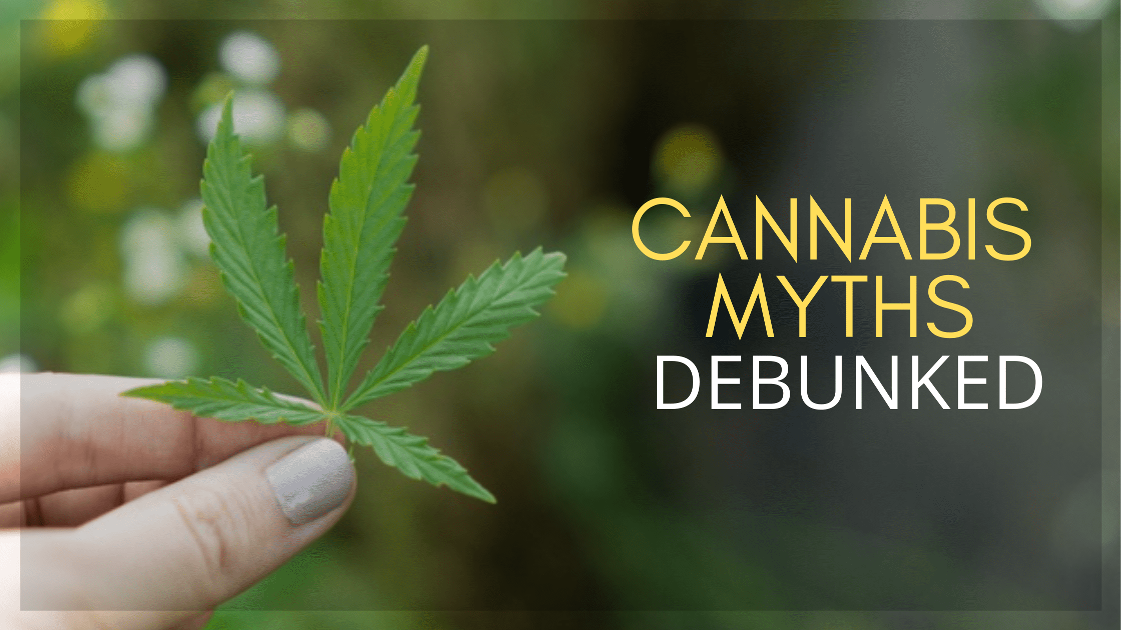 Misconceptions About Cannabis